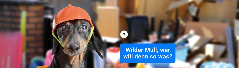 Wilder Müll, wer will denn so was?